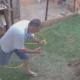 Mees valab koduaias sipelgapessa bensiini ja viskab sinna tiku, terve hoov lendab õhku