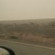 Karm! Austraalia mees filmib põlengutest räsitud teeäärt, mis on täis hukkunud loomi